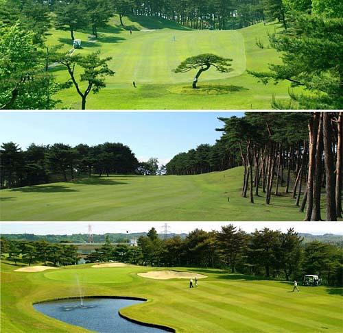 20140531_golf-01
